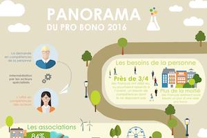 vignette-panorama-probono-2016