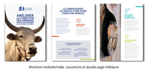 brochure_LFDA